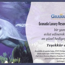 WWF 2013 Granada Luxury